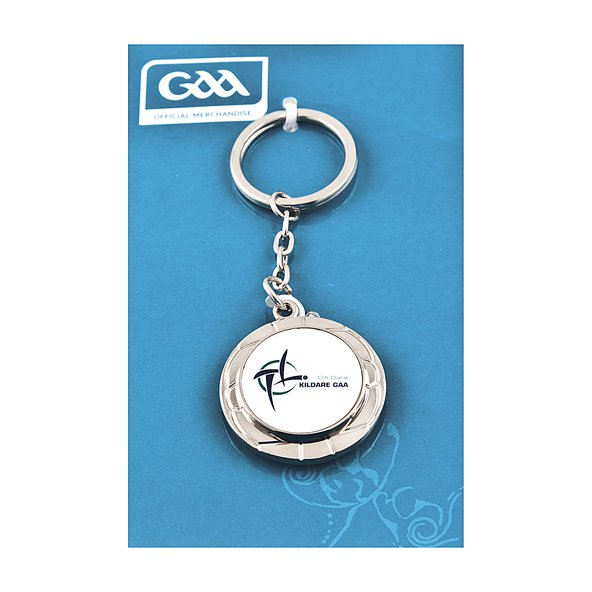Introsport Kildare Chrome Keyring