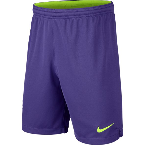 Nike Tottenham 2018/19 Kids' Goalkeeper Short, Purple
