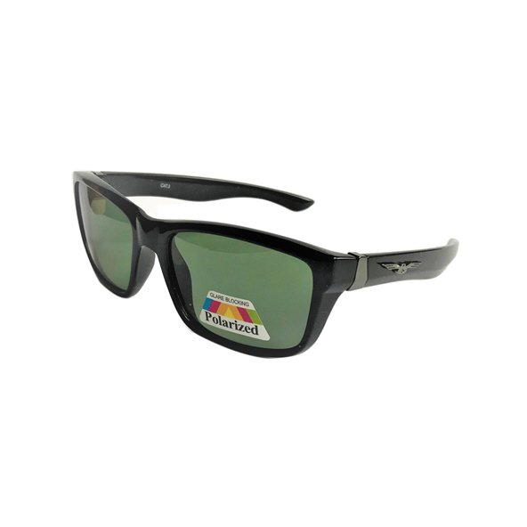 RB Sunglasses Polarized Wayfarer
