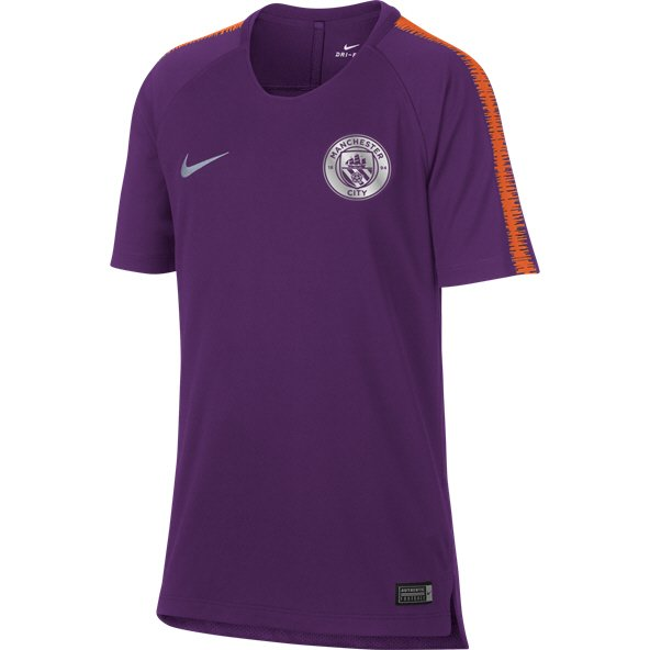 Nike Man City 2018/19 Squad T-Shirt, Purple