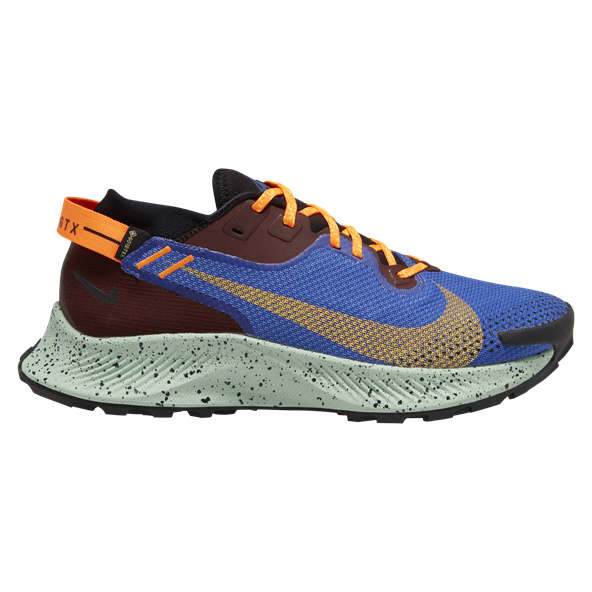 Nike Pegasus Trail 2 GTX Women's Shoe Blue