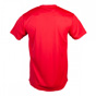 Umbro St. Patricks Athletic F.C.Training Jersey Red